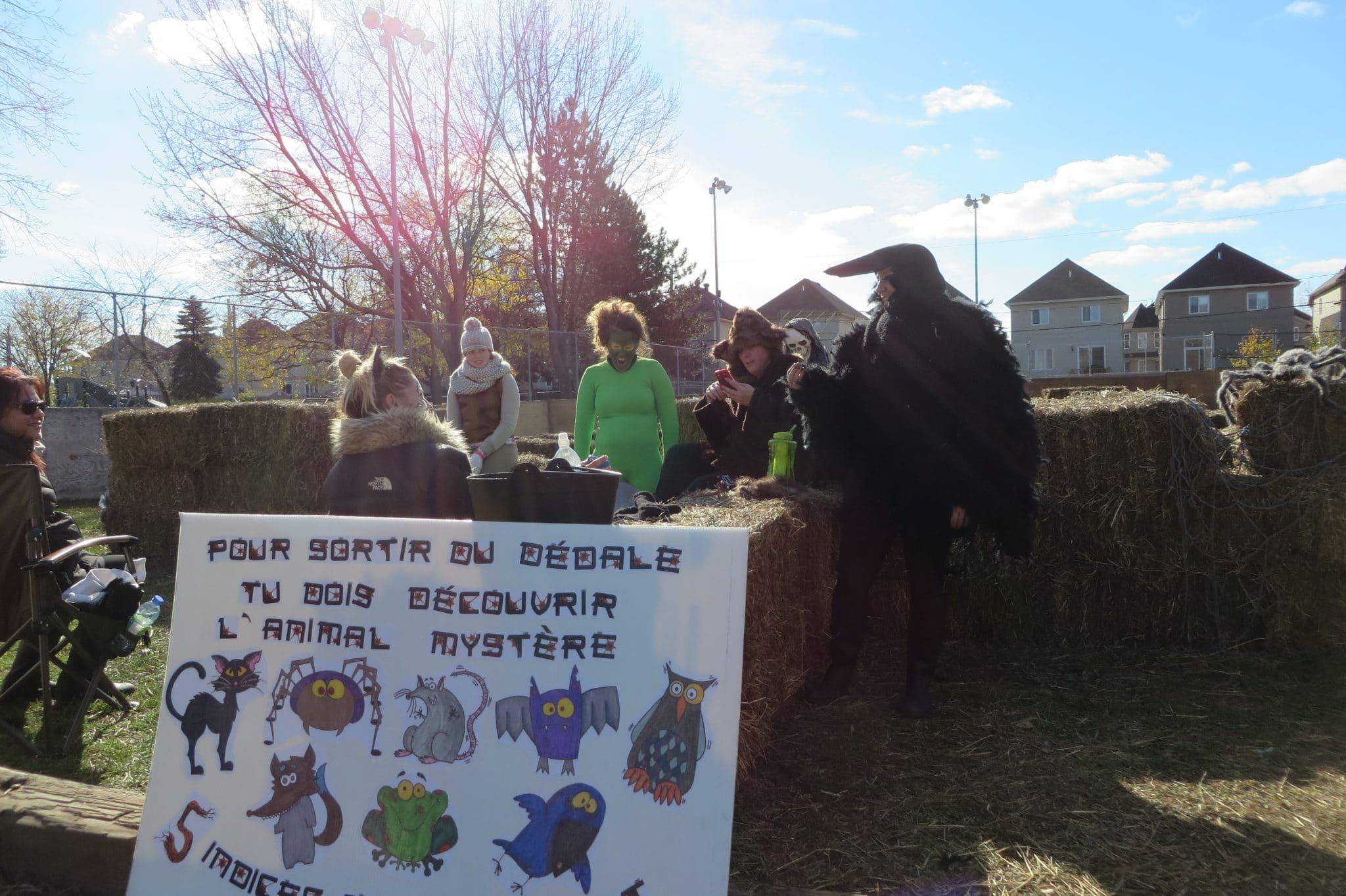 Crédit photo : Jessica Bayard, les Clubs 4-H du Québec