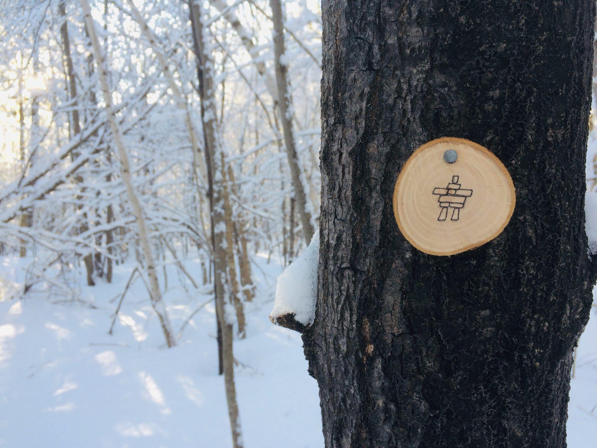 Indice sur un arbre. Crédit photo : Frédéric Moreau